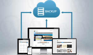 What Can You Do To Successfully Backup Your WordPress Website?