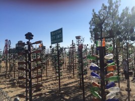 The Bottle Ranch in Bagdad California