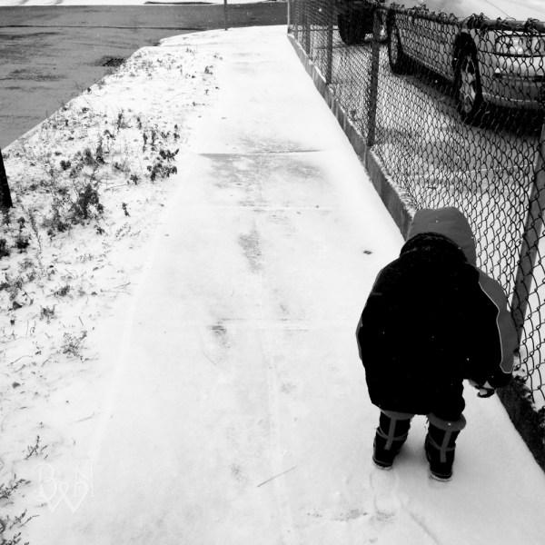 Winter Snow SilenceWhiteFlower