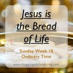 Sunday Reflection: Jesus Is the Bread of Life