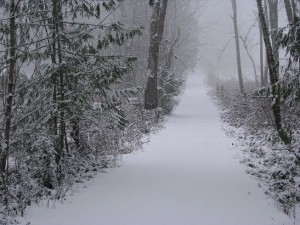 The snowy driveway to Lorelle's home
