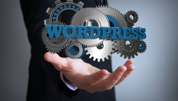 essential wordpress plugins 2015