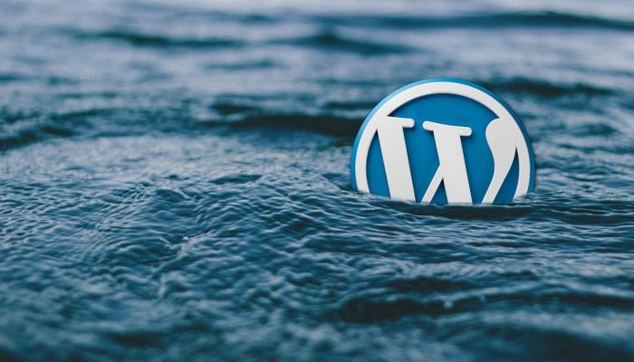 Why You SHOULDN'T Use WordPress as Your Blogging Platform