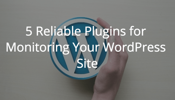 5 Reliable Plugins for Monitoring Your WordPress Site