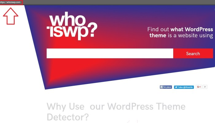 5 Easy Steps to Detect What WordPress Theme a Site is Using
