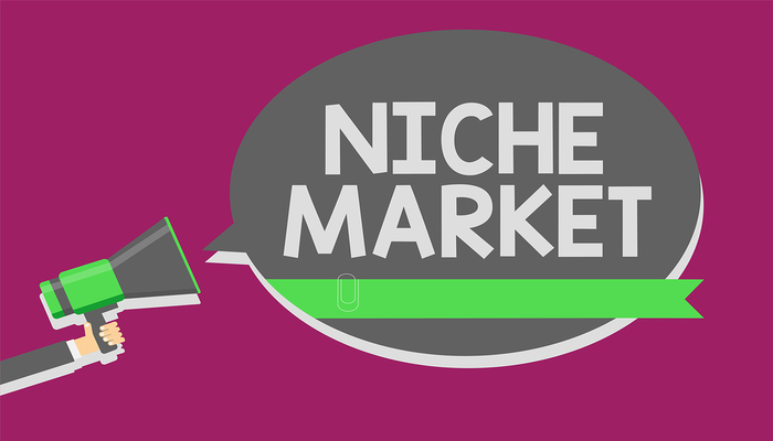 7 Ways to Target and Retain Your Niche Audience   The Blog