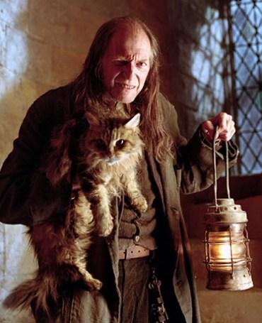 David Bradley regresa a 'Harry Potter y las Reliquias de la Muerte'
