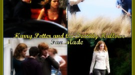 Video del Mes: Harry Potter and the Deathly Hallows [Fan Made]
