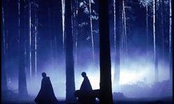RUMOR: Mucha Niebla en el Tenebroso Bosque Prohibido del Parque de Harry Potter