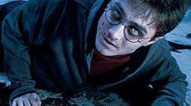 Perfil: Harry James Potter