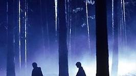 Top 10: Eventos y Momentos dentro del Bosque Prohibido