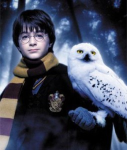 Top 5: Lechuzas en el Mundo de 'Harry Potter'