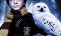Top 5: Lechuzas en el Mundo de 'Harry Potter'