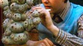 Matthew Lewis Asistirá a Pre-Estreno de 'Las Reliquias, Parte I' en Buenos Aires
