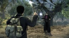 Nuevas Imágenes del Videojuego de 'Harry Potter y las Reliquias de la Muerte, Parte I'