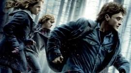 Resumen: Harry Potter 2010!