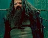 Escena Extendida del Harry y Voldemort en el Bosque Prohibido de 'Las Reliquias de la Muerte, Parte II'!