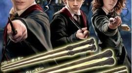 Palitos Sushi de Harry Potter