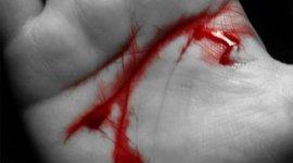 La Deuda de Sangre, Capítulo 2