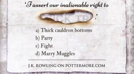 «Truco» de Pottermore: ¿Recuerdas la Confederación Internacional de Magos en 1981?