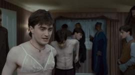 7 Sostenes de Harry Potter Que Toda Fan Debería Tener