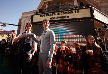 El Parque de Harry Potter en Hollywood Abrirá sus Puertas en la Primavera de 2016
