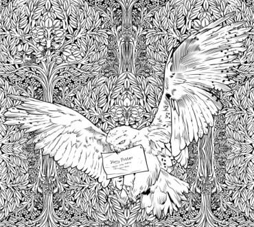 Mira los dibujos del Libro oficial de colorear de Harry Potter