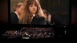 Conciertos oficiales de Harry Potter llegarán a México en Enero de 2017!