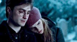¿Cómo sería la historia, si Harry Potter hubiese sido adoptado por los Granger?