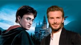 Se revela por qué Harry Potter tenía el número 7 en su uniforme de Quidditch!