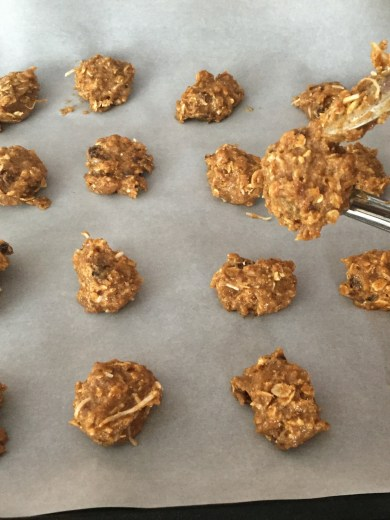 Healthy Coconut & Almond Butter Cookies