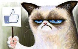 Cate-Facebook-LIke Krwawa jatka