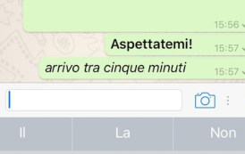 Come scrivere in grassetto, corsivo o sbarrato su Whatsapp