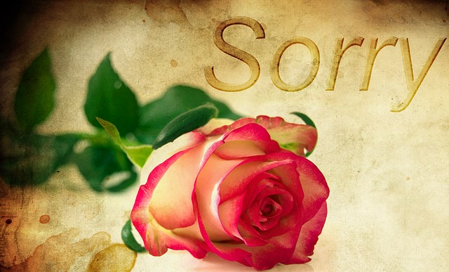 Sorry - pictures