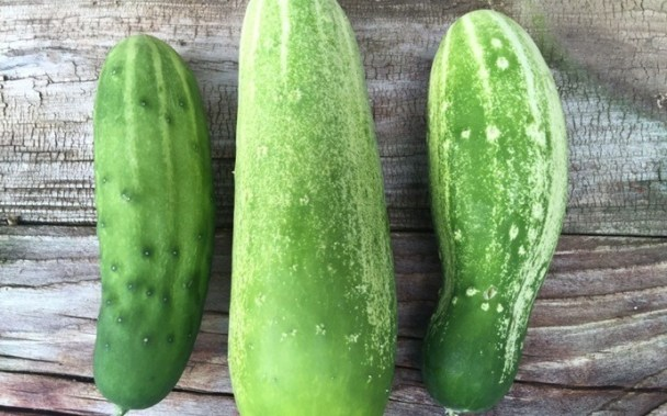 Cucumber for Sensitive Skin