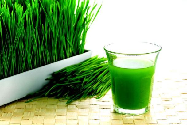 ) Wheatgrass Juice for Toothache