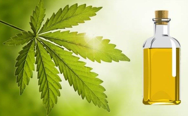 Neem Oil for Itchy Scalp
