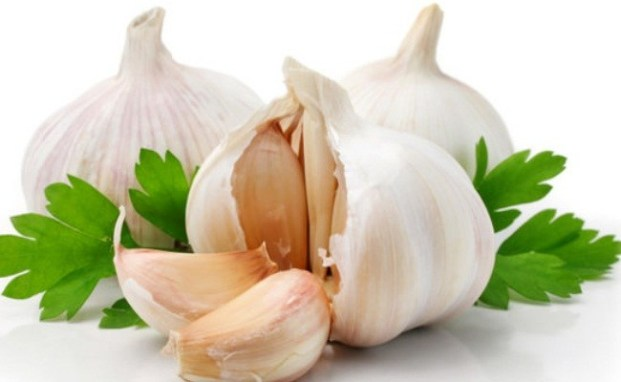 Garlic for Yeast Infection
