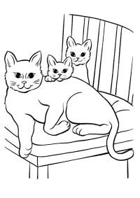 disegni di gatti da colorare e stampare gratis _ gatta con ...