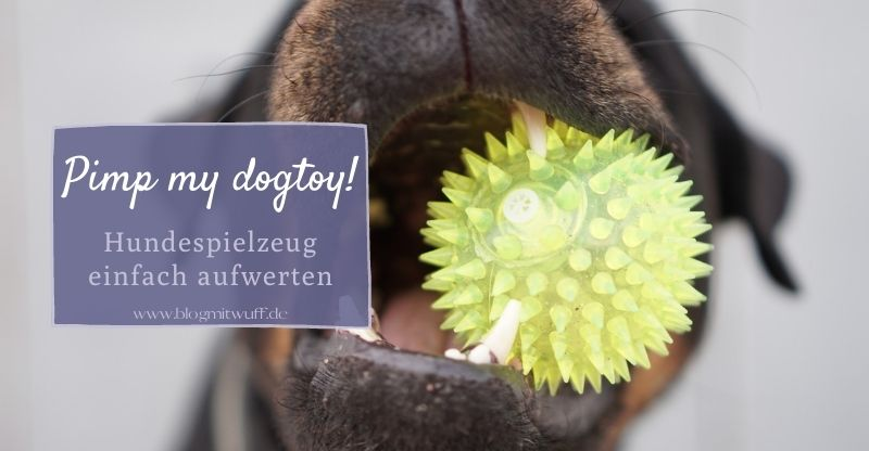 Read more about the article Pimp your dogtoys – Wie du Hundespielzeug ganz einfach aufwerten kannst