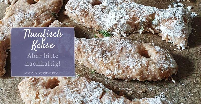 Read more about the article Thunfisch Kekse für Hunde – Aber bitte nachhaltig!