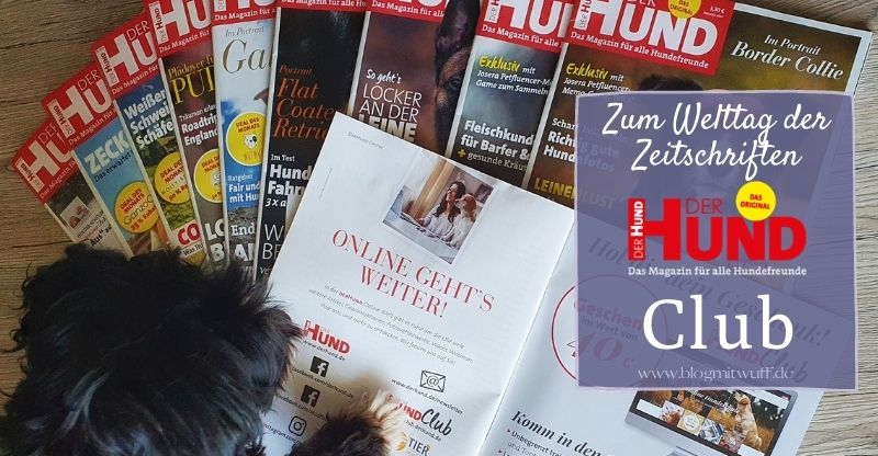 Read more about the article DER HUND – Magazin & Club
