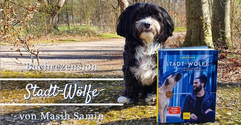 Read more about the article Buchrezension Stadt-Wölfe von Masih Samin