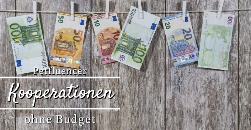 Read more about the article Kooperationen ohne Budget