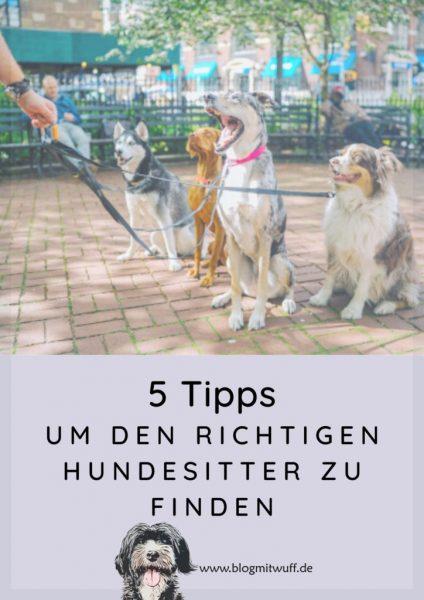 Pin zu 5 Tipps um den richtigen Hundesitter zu finden