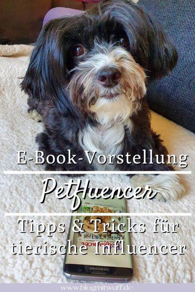 Ebook Petfluencer Tipps und Tricks Pablo Pin