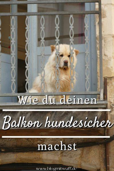 Pin Balkon hundesicher gestalten