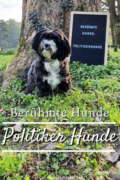 Pin Berühmte Hunde Politiker Hunde
