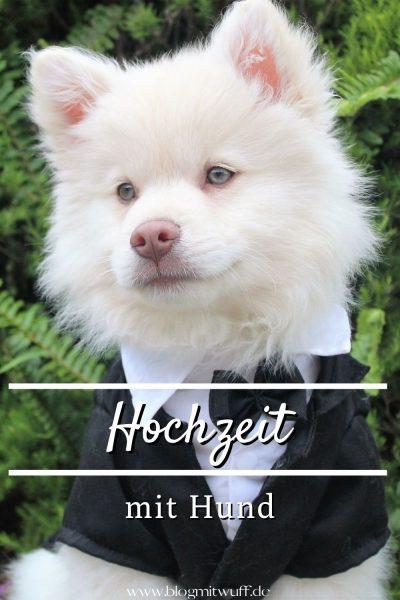 Pin Hochzeit mit Hund