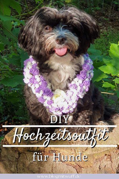Pin Hochzeitsoutfit für Hunde